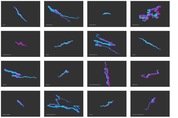 genome walker grid - Seeing Numbers
