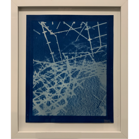 Untitled by Julia Shepley   •   cyanotype   •   $300