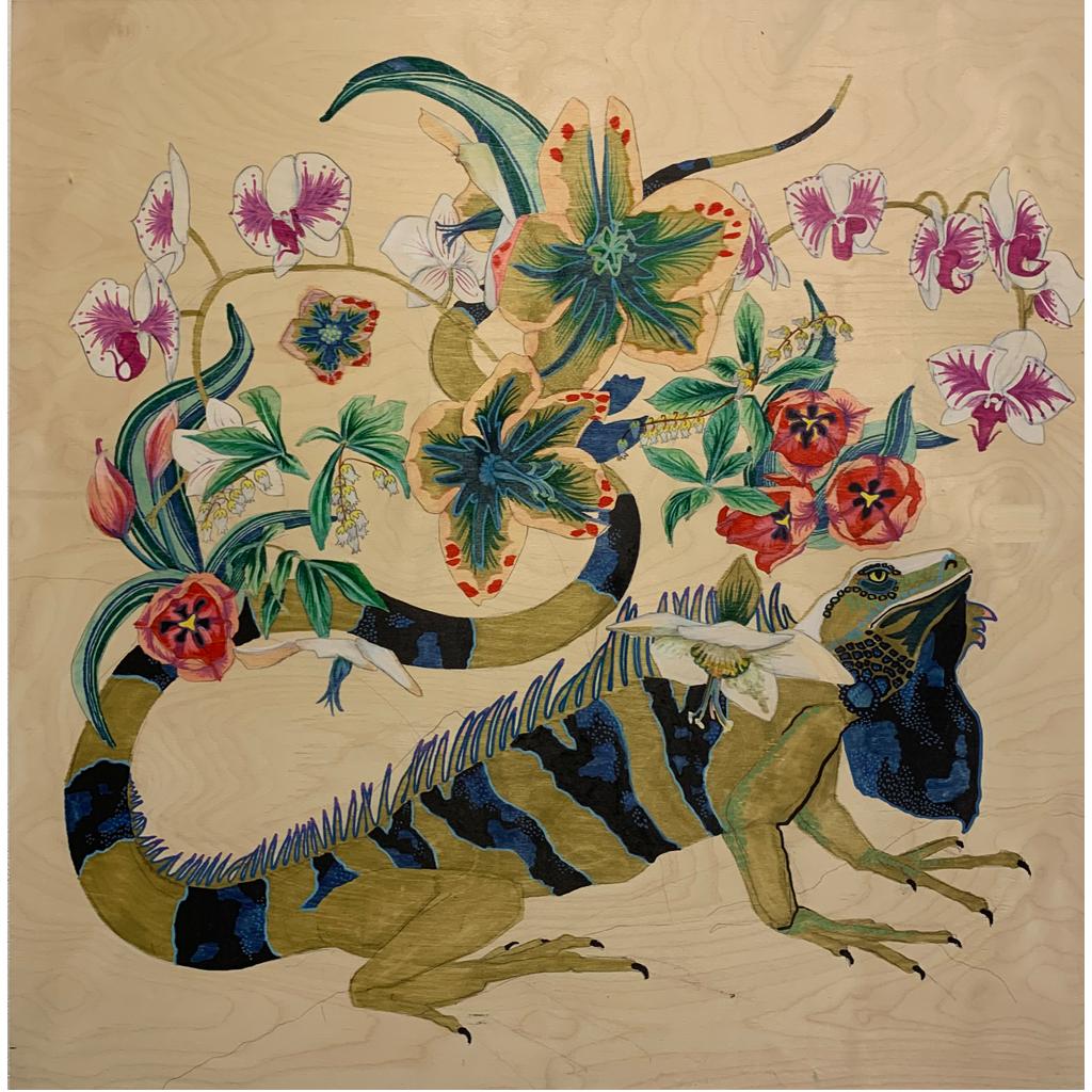 Caitlin Doering   -   Iguana   -   ink & acrylic   -   $500