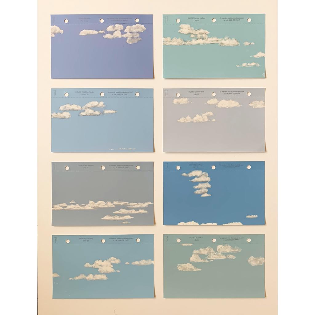Ellen Young   -   Cloud Studies   -   altered paint samples   -   $400