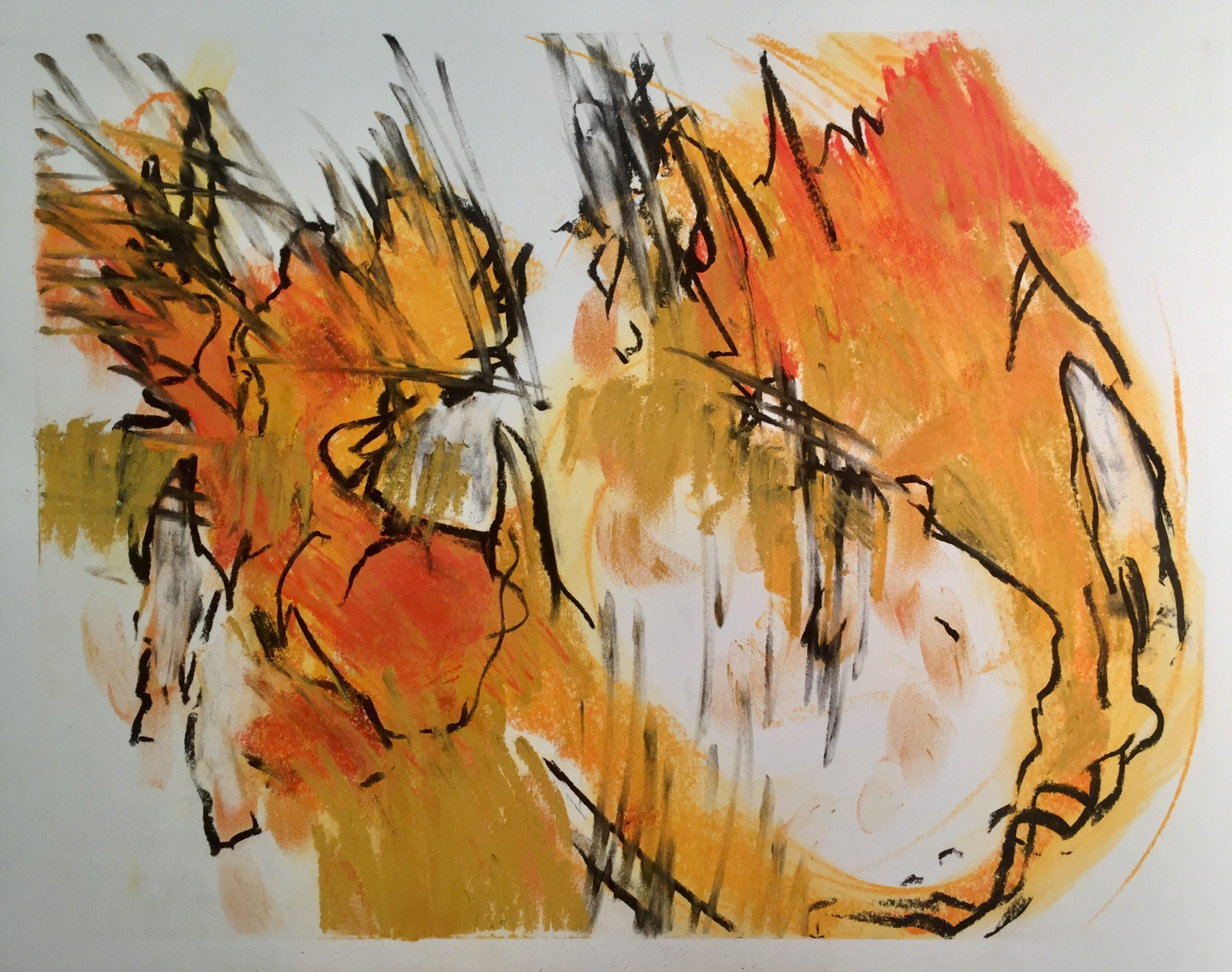Jonathan Rich  -  Long-Footed Potoroo (from The Fire Drawings)  -  charcoal & pastel on paper  -  20 x 18  -  NFS