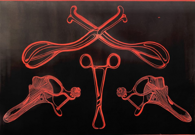 Nina Fletcher  -  Whose Uterus is this Anyway?  -   34x24